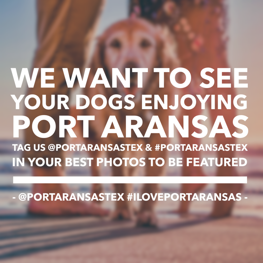 We want to see your dogs enjoying Port Aransas. | www.portaransastex.com