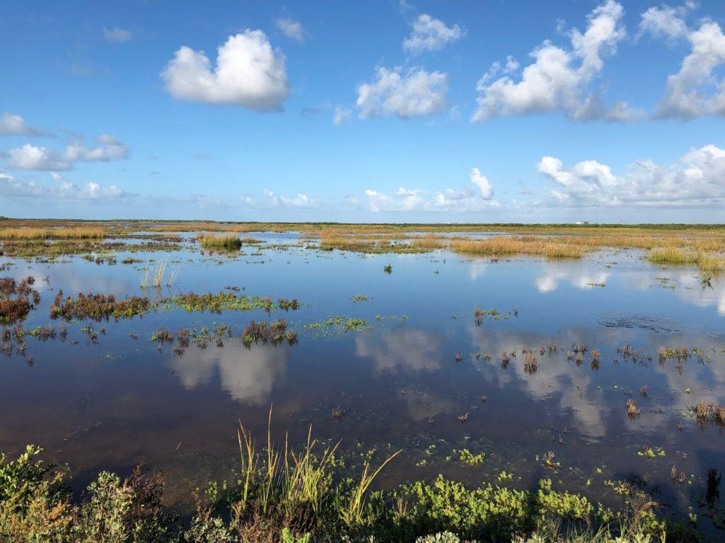 Port Aransas Nature Preserve | www.portaransastex.com