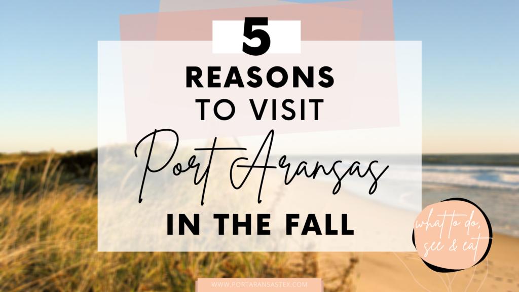 5 Reasons to Visit Port Aransas in the Fall | Port Aransas Explorer