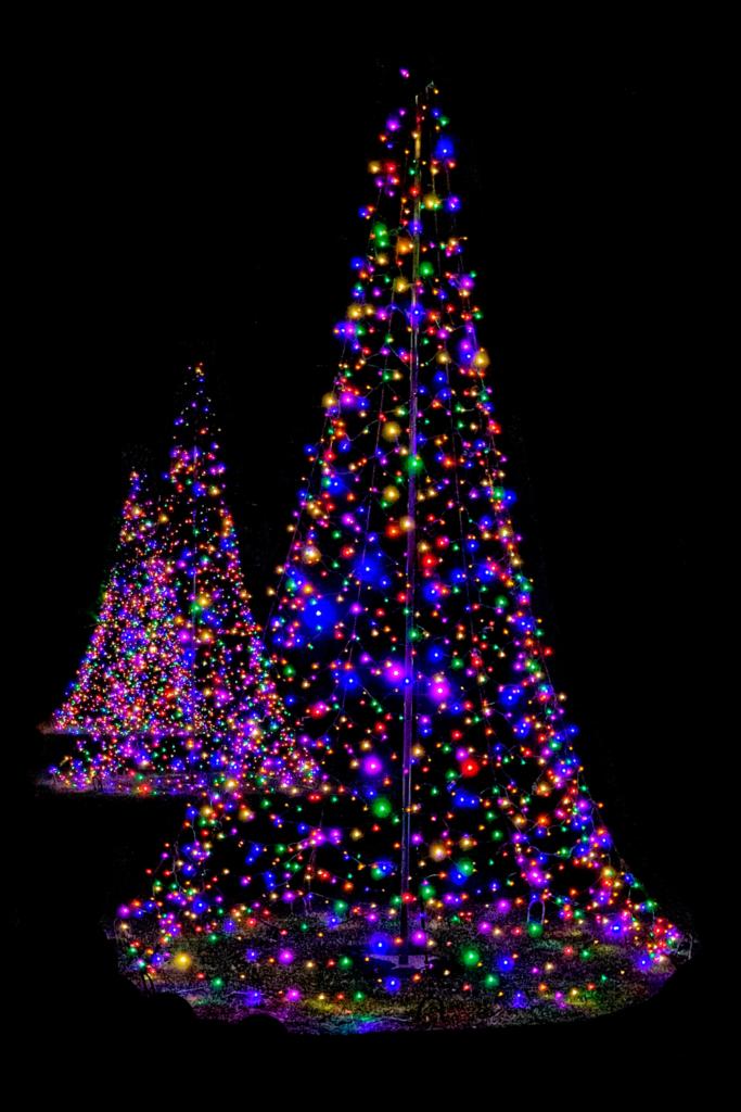 Christmas tree lights | Port Aransas Explorer